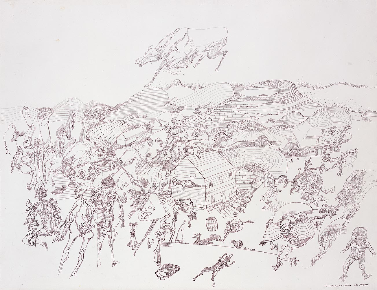 Uzgoj prokulica, 1963