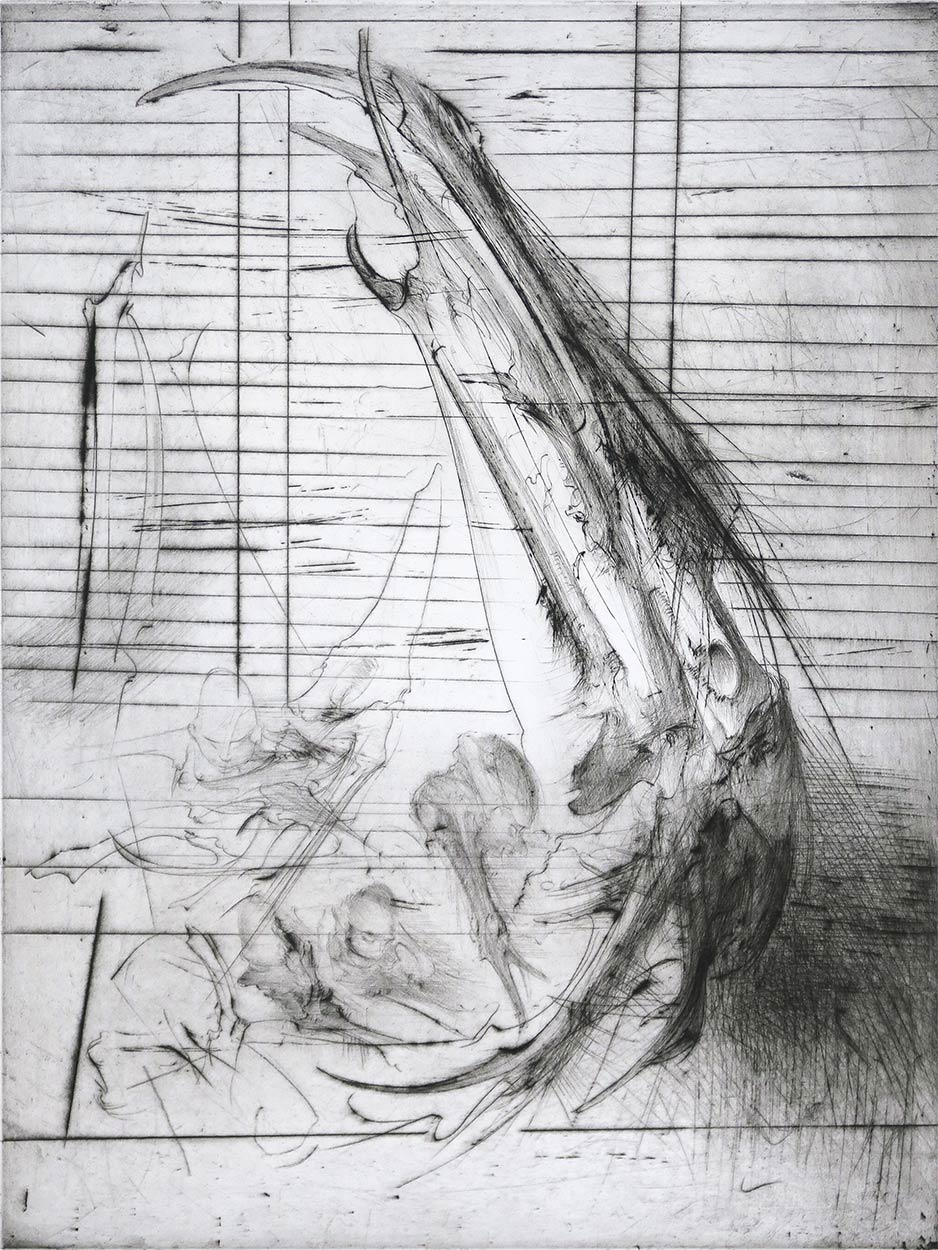 Print by Dado, 1981