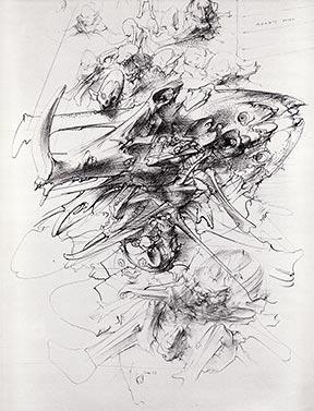 Warthog skull, 1978