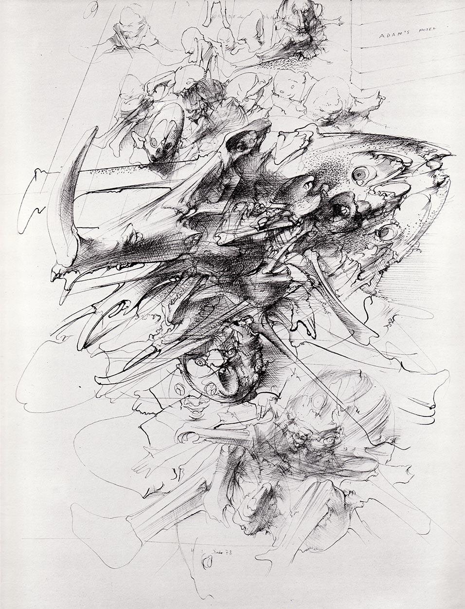 Lobanja bradavičaste svinje, 1978