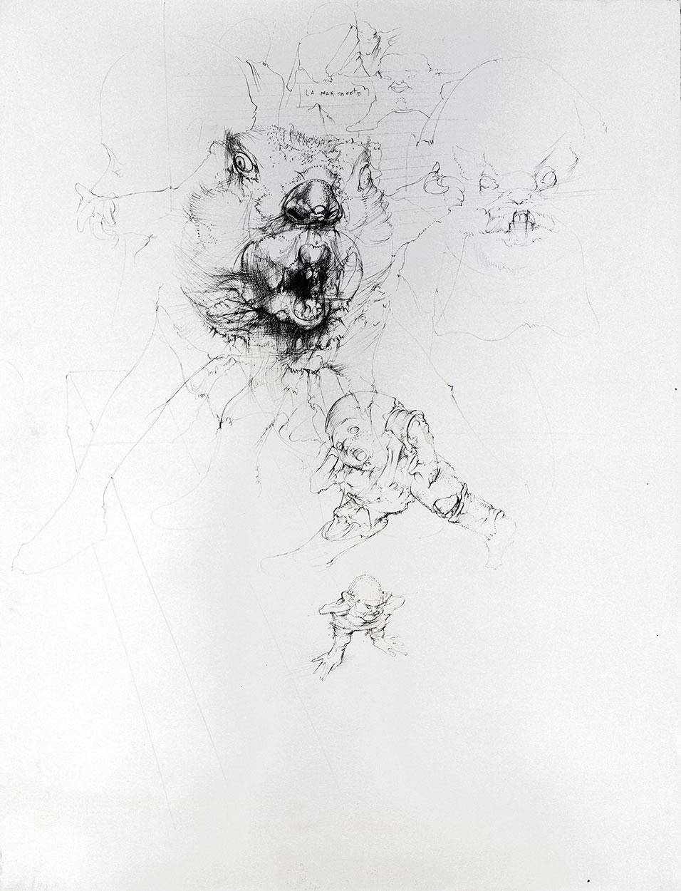 Marmot, 1978