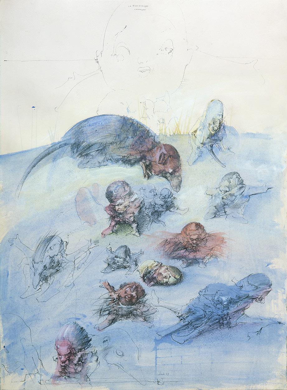 Common shrew, 1978