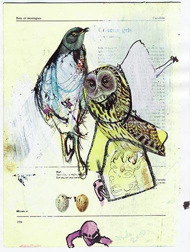 Oiseaux d'Auschwitz