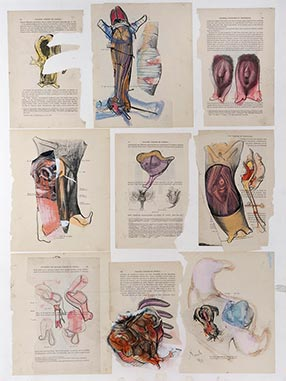 Anatomy, 1990