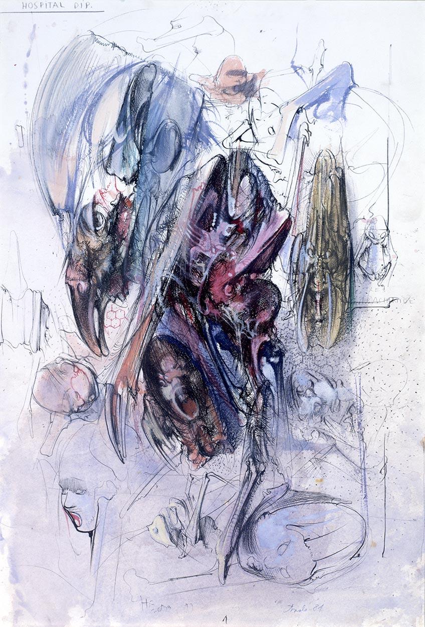 Hospital diptih I, 1981