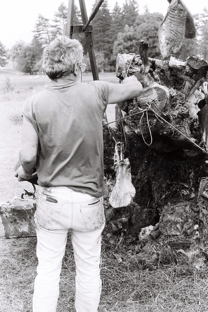 Prvi Cetinjski bijenale, 1991.